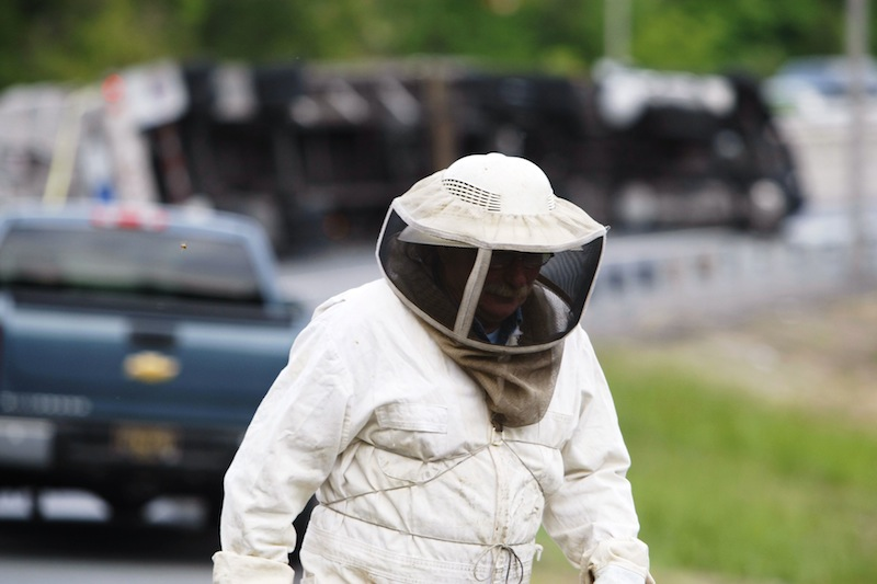 Bees swarm after being released from a tractor-trailer that overturned carrying them near Newark, N.J., Tuesday, May 20, 2014, on the ramp from Route 896 to Interstate 95. Sgt. Paul Shavack said the driver and a passenger were taken to Christiana Hospital with minor injuries. Bees