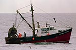 U.S. Rep. Don Young, R-Alaska, has proposed a change to the Magnuson-Stevens Fishery Conservation and Management Act to provide more flexibility in rebuilding fish stocks. File Photo/The Associated Press