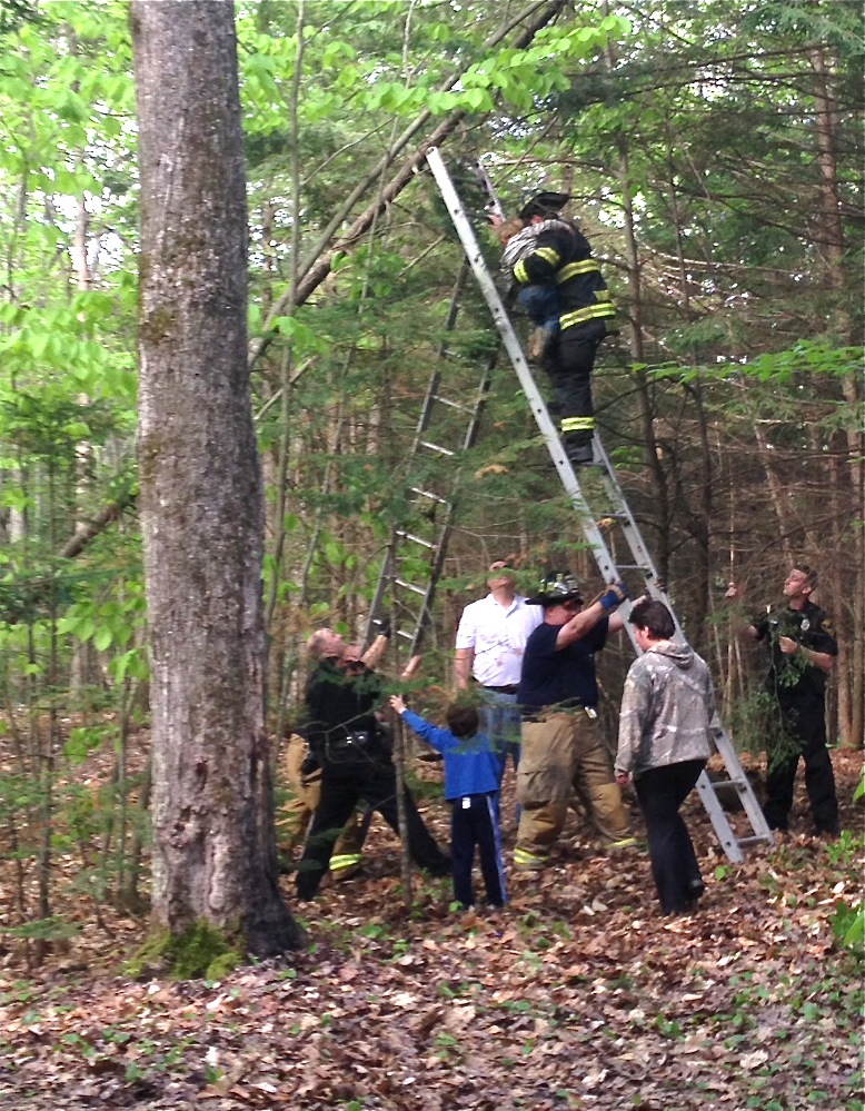 Winslow firefighters use a ladder to get Richard Brewster down from a tree he had climbed Wednesday in a wooded area off China Road.