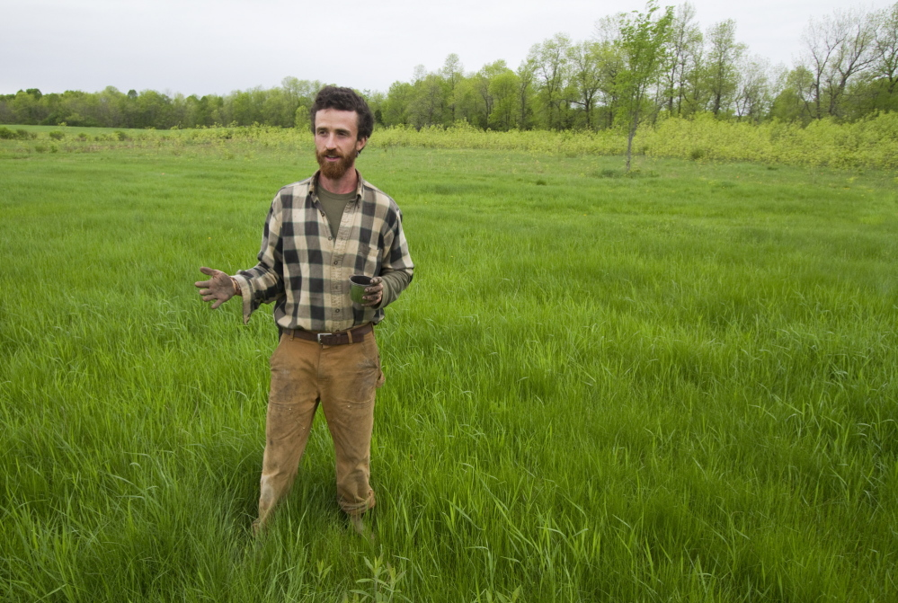 In May, Rooney stands on the site of a future rice paddy while talking about growing the grain in Maine. Carl D. Walsh/Staff  Photographer