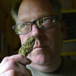 """Crash Barry with a marijuana bud at his home in Oxford County. Barry is doing speaking engagements and signings around the state – and occasionally lighting up – to support his book, """"Marijuana Valley.""""  John Patriquin/Staff Photographer"""