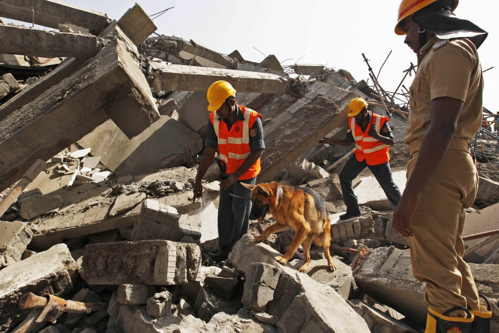 Rescuers use a sniffer dog on Sunday to search for workers believed to be still buried in the rubble of a building that collapsed late Saturday during monsoon rains in the outskirts of Chennai, India. Officials said dozens of workers have been pulled out so far and the search is continuing.