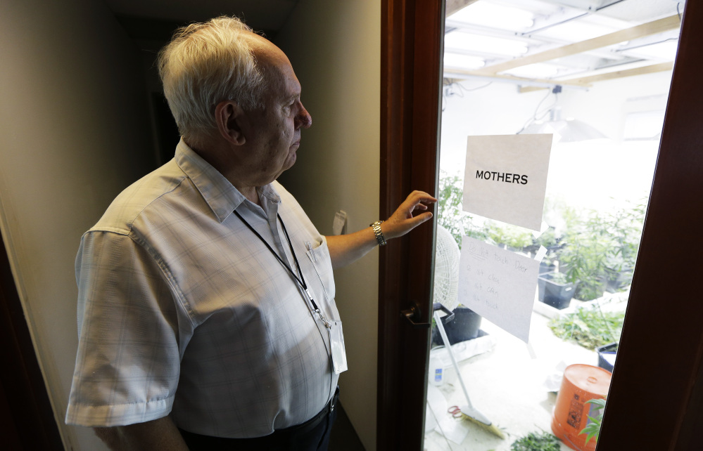 Bob Leeds, who retired from banking and social-services work to become a partner at Sea of Green Farms, a licensed pot-grower in Seattle, stands outside the room where plants used to clone smaller plants are kept. Sea of Green is licensed to grow some of the first pot that will be legally sold for recreational use in Washington state starting in July.