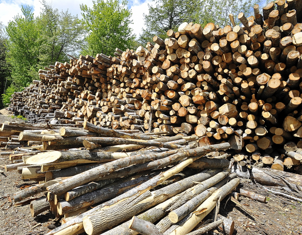 WINDHAM, ME - MAY 21: Mark Killinger, owner of Atlantic Firewood and his son, Mike Killinger, owner of Maine Logging work together to cut and process firewood for sale. This is about 300-350 cords of hardwood logs cut by Mike last winter. (Gordon Chibroski/Staff Photographer)