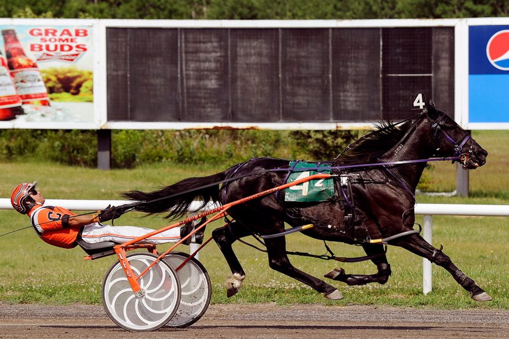 Drew Campbell, driving It Hurts Me, secures win #3,500 on Sunday at Scarborough Downs. Photo by Michael Newman.
