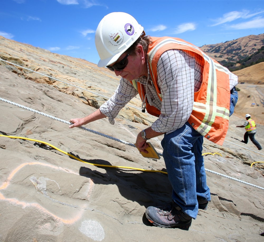 Paleontologist Bruce Hanson looks at a Desmostylus tooth on a hillside at the Calaveras Dam replacement project in Fremont, Calif.