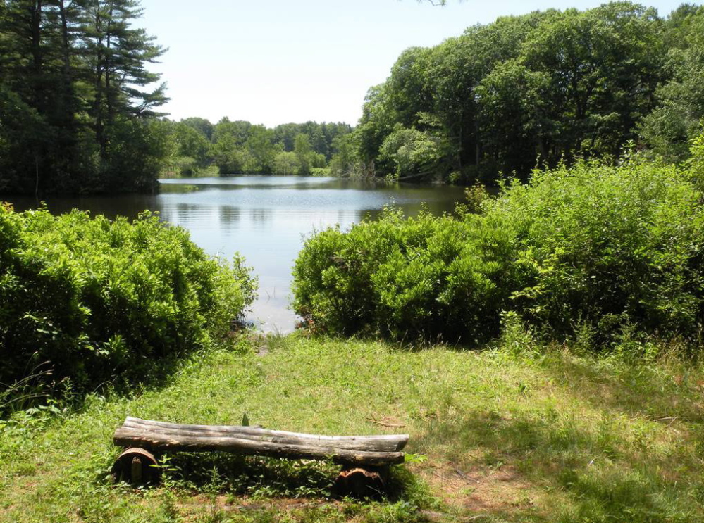 Salt marshes, forests and more make a hike at Spear Farm Estuary Preserve both enjoyable and a way  to burn off the calories consumed at next weekend's Yarmouth Clam Festival.