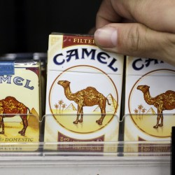 Camel cigarettes, a Reynolds American product, are on display at a liquor store in Palo Alto, Calif. The Associated Press
