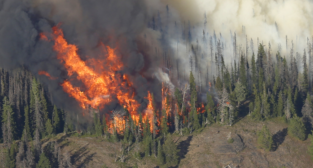 Massive flames burn trees in the Chiwaukum Creek Fire as seen from the air near Leavenworth, Wash., Thursday. The blaze closed a section of U.S. Highway 2, and resulted in the evacuation of nearly 900 homes.