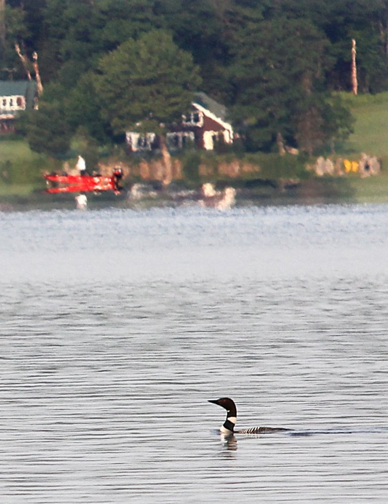 A loon makes its way across Great Pond in Belgrade on Saturday morning.