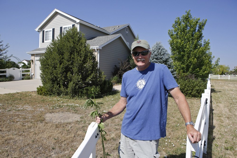 Jim Denny posing in front of his home in Brighton, Colo. Denny learned the hard way that he needed neighbors' permission before growing hemp, marijuana's non-intoxicating cousin.