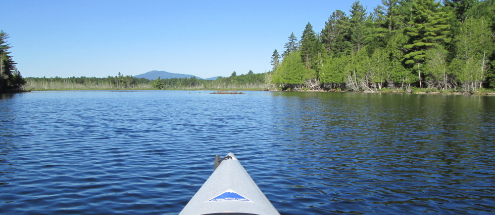 Big Moose Mountain is one of the many sites that can be viewed during a trip to Prong Pond in Greenville, just south of Moosehead Lake.