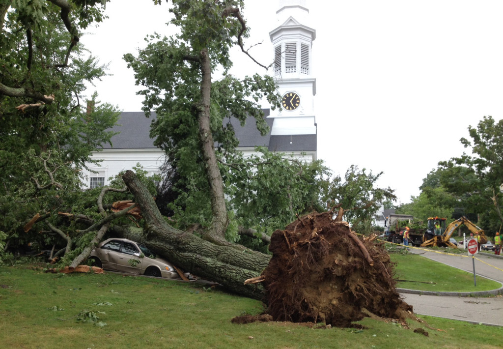 An uprooted tree rests on two vehicles near First Parish Church in York.