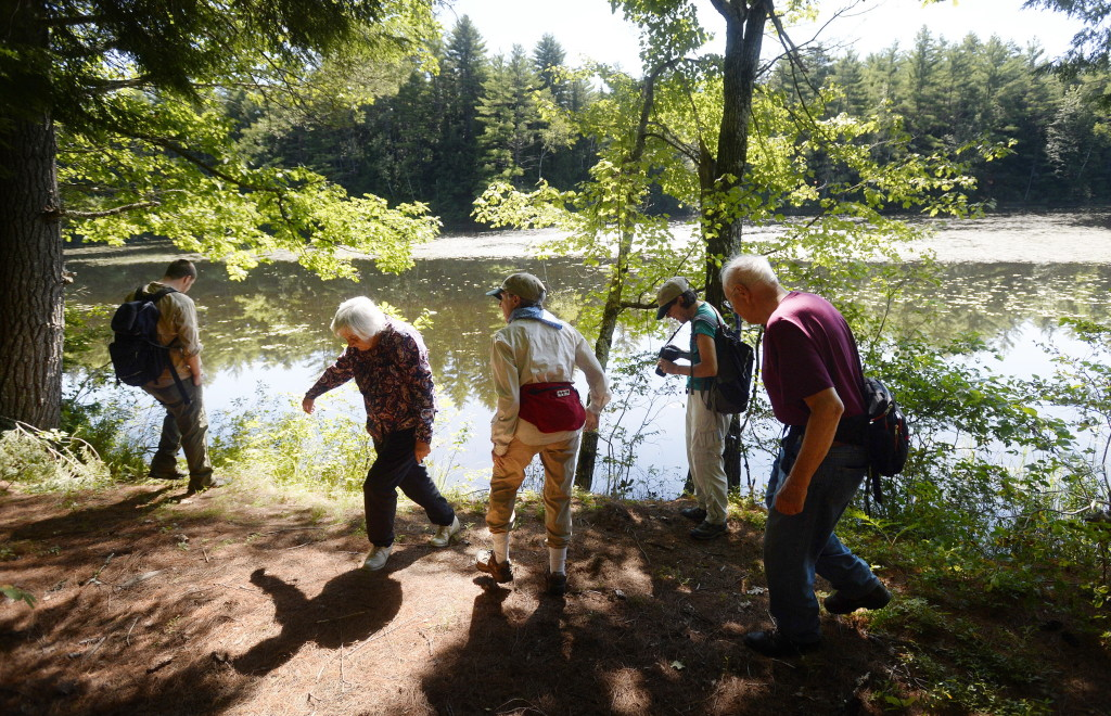 A group of hikers explore the land along the Kezar River in Lovell Wednesday.
