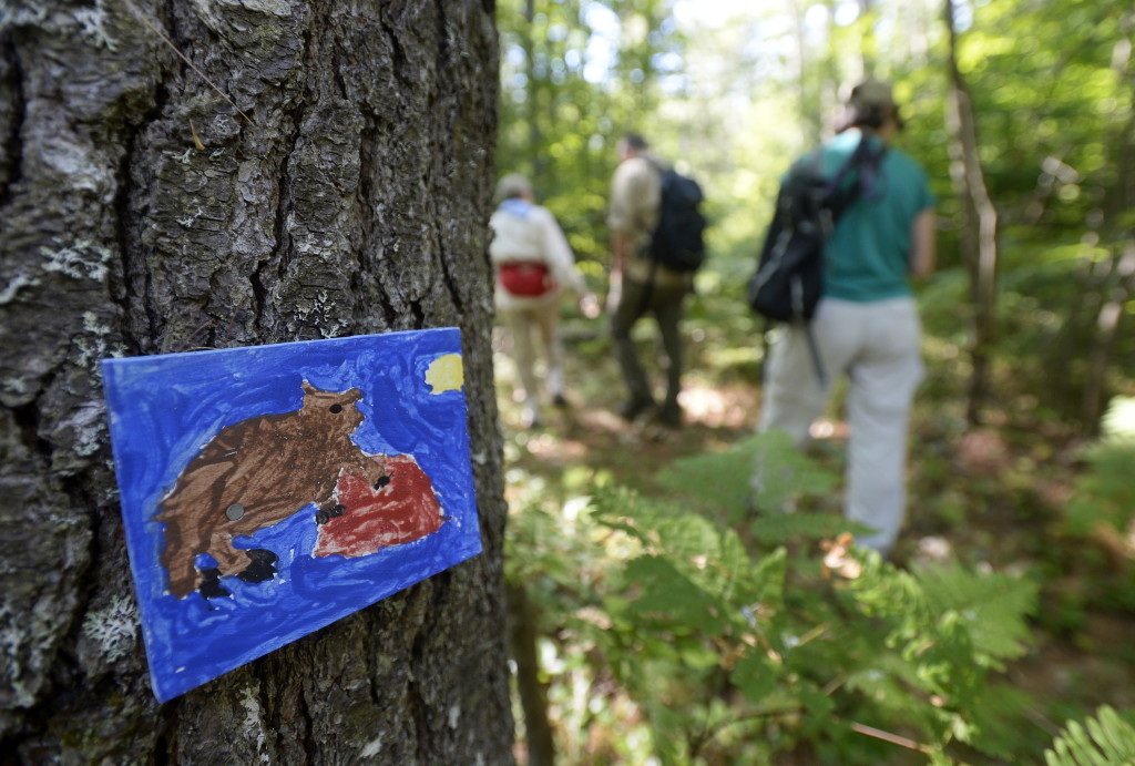 Local schoolchildren made small paintings to help mark the trail in the Kezar River Preserve in Lovell.