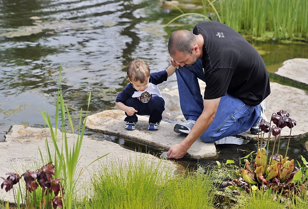 Visitors explore Blueberry Pond in the popular Children's Garden at Coastal Maine Botanical Gardens in Boothbay.