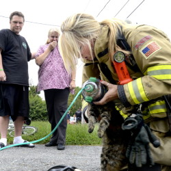 Homeowner Katherine Noiles watches with neighbor Larry Higgins as Westbrook firefighter Rachel Welsh tries to revive Noiles' cat after her house caught fire at 40 Myrtle St. in Westbrook on Friday. The cat didn't make it.