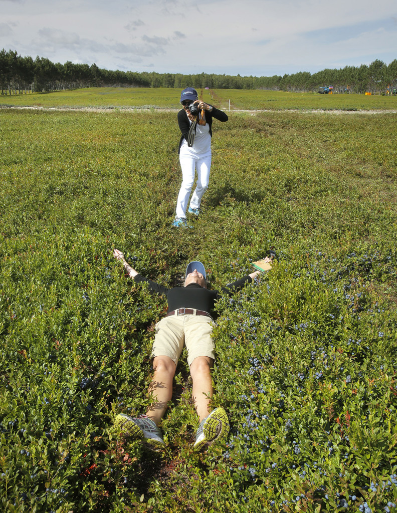 Susan Irby lies down in a blueberry barren near Cherryfield as Betta Stotthart takes her photo. Irby is a well-known food blogger whose site is called The Bikini Chef. Stotthart works with Ethos Marketing & Design of Westbrook, which helped organize the food blogger tour of Maine's blueberry barrens and processing facilities.