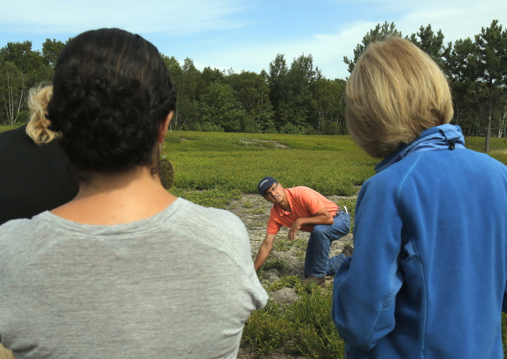 David Bell of Cherryfield Foods talks about aspects of regrowth in the Downeast blueberry barrens to food bloggers who visited the barrens and blueberry processing facilities.