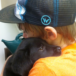 "This photo provided by Dianne Larson shows her son, Tanner, with 8-week-old Ruby at the Best Friends Animal Society in  Los Angeles. Tanner was working with puppies and met Ruby, a black Lab. ""It was love at first sight,'' Larson said. Ruby is now 1 year old and school has been in session for two weeks. Ruby's still searching for him when he's gone. The Associated Press"