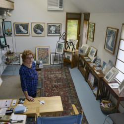 Georgeann Kuhl in her gallery at Widgeon Cove Studios. Kuhl makes paper and combines different pigments to create landscapes and other artwork.