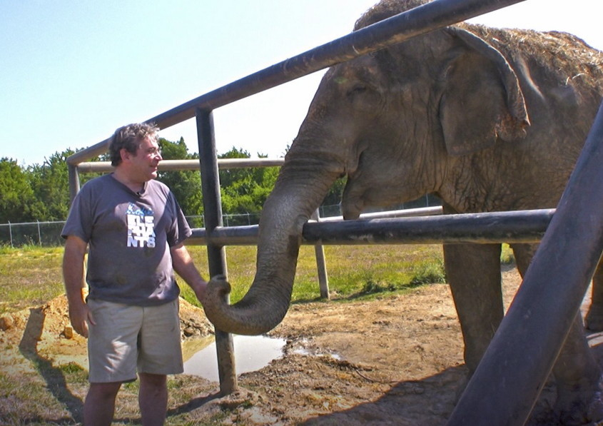 James Laurita interacts with Rosie at the Hope Elephants sanctuary in this undated photo. Hope Elephants was founded by James and Tom Laurita in 2011 to provide a home and rehabilitation center for injured and aging elephants, while also educating the public about the animals.