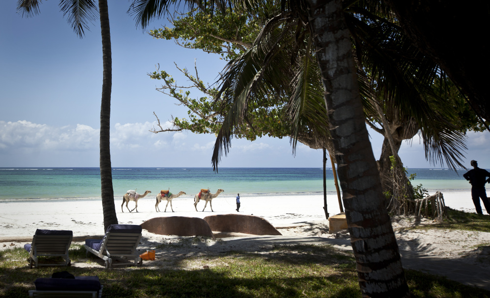 A man offering camel rides for tourists leads his animals along the Indian Ocean beach of Diani, a popular tourist destination on the coast of Kenya. Ebola is thousands of miles away from Kenya's pristine Indian Ocean beaches but the deadly disease appears to be discouraging tourism there and elsewhere in this vast continent, with tour operators across Africa saying they face difficulties.