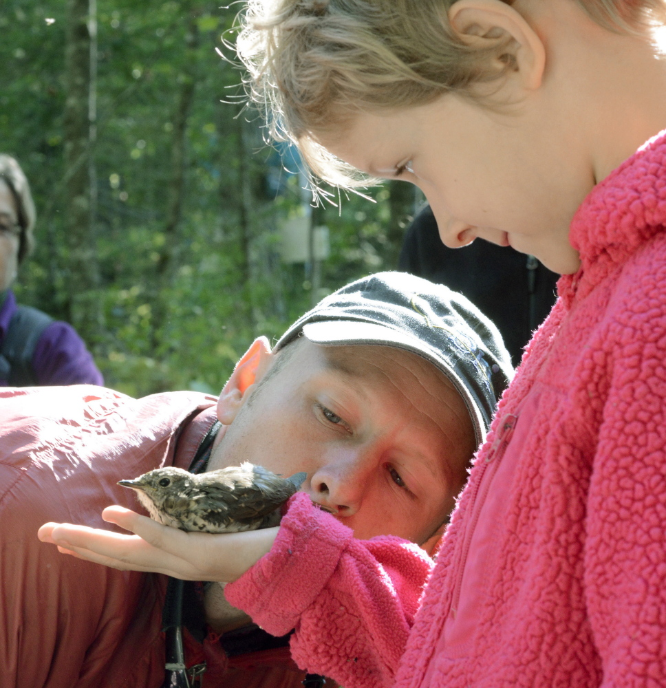 Seven-year-old Freya Drum of Damariscotta watches as wildlife biologist Patrick Keenan gently blows and urges a hermit thrush to go airborne from her hand during a banding session last week at Hidden Valley Nature Center in Jefferson. And the joy in that smile shows this will be a day to be remembered for years to come for Drum.