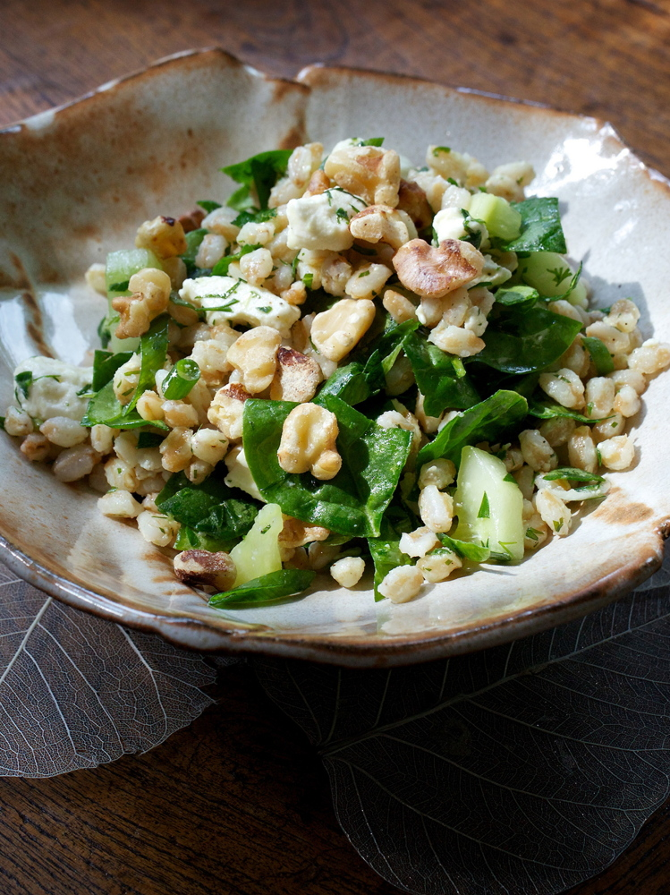 Farro, the grain that fed the Romans, has regained its legions of admirers.