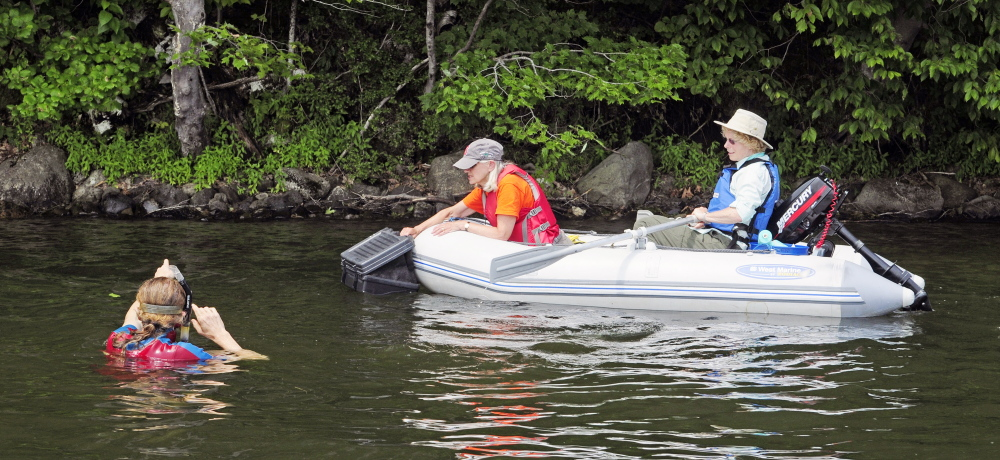 Kent Ackley, in water at left, Carol Fuller and Lea Stablinski confer about where to look next during a search for milfoil in July 31 on Annabessacook Lake in Winthrop. Tests have shown the presence of milfoil, and crews returned to the lake Wednesday to address it.