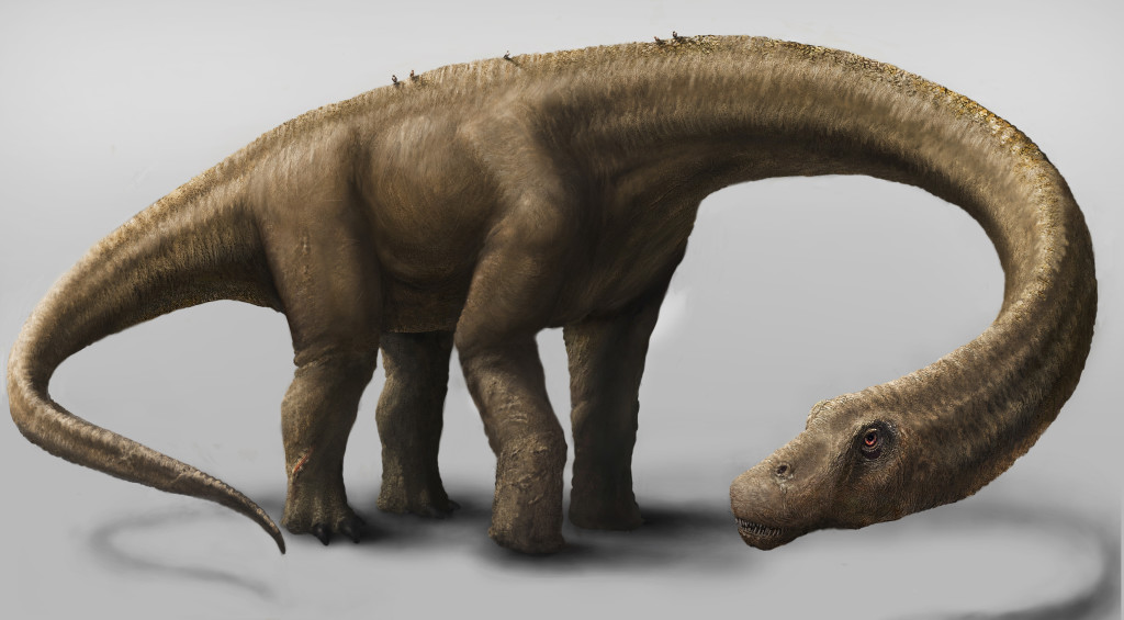 This artist rendering provided by the Carnegie Museum of Natural History shows the Dreadnoughtus, a herbivore that likely spent much of its life eating massive quantities of plants to maintain its enormous body size. The Associated Press