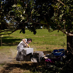 David Curry of Union works on a sculpture as part of the first ever Viles Arboretum Sculpture Symposium in Augusta. Gabe Souza/Staff Photographer