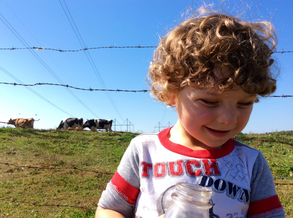 The author's son loves his cow's milk, causing his parents to look into whether that contributes to iron deficiency.
