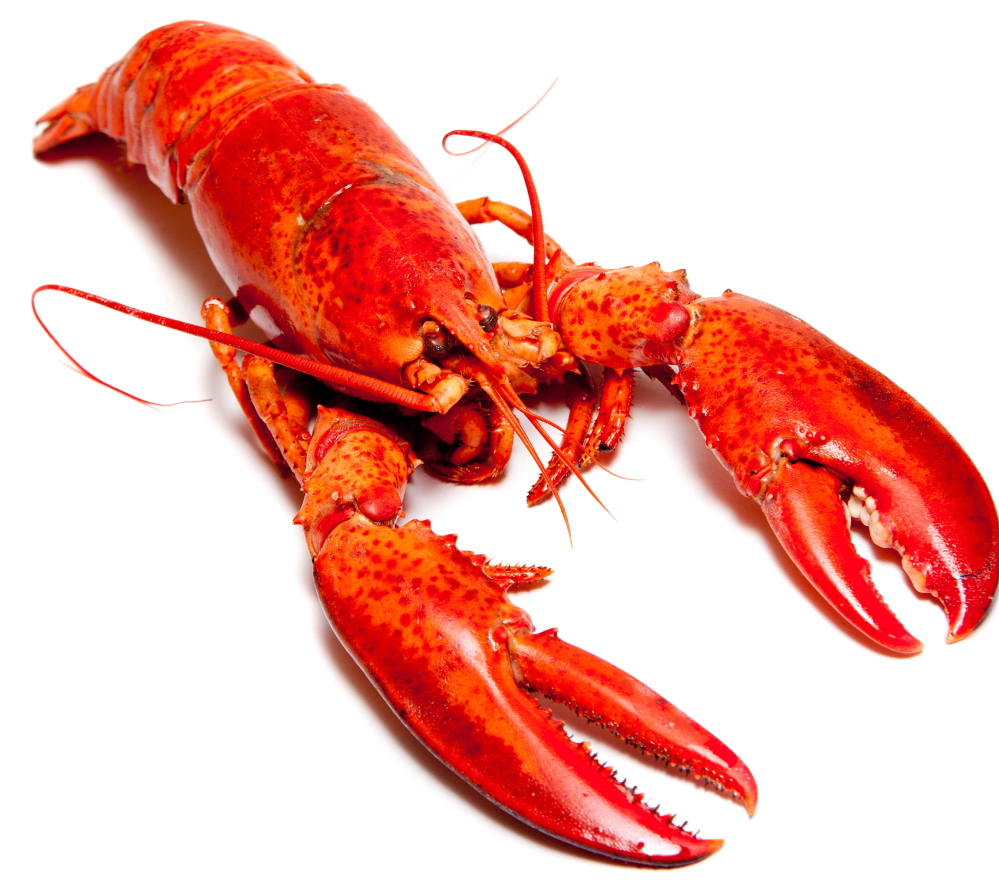 Maine lobster on the menu for Obama's dinner with Chinese president - Portland Press Herald