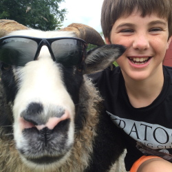 Owen McDuffie of Gray and his super cool Icelandic sheep, Midnight.