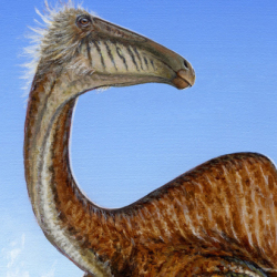 Upon further review, Deinocheirus mirificus – shown here in a handout image provided by Michael Skrepnick, Dinosaurs in Art, Nature Publishing Group – was not a fearsome monster as initially perceived. Although it had large, powerful arms, it also bore feathers, had no teeth and ate like a giant vacuum cleaner – causing scientists to now describe it as goofy and weird.