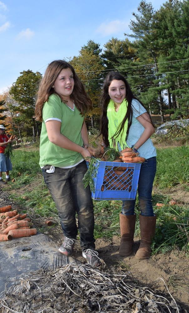 Wells-Ogunquit Community School District students McKaela Schiller, left, and Lily Heyland harvest carrots at Spiller Farm in Wells, as part of the district's Farm to School initiative to introduce students to eating locally grown food.