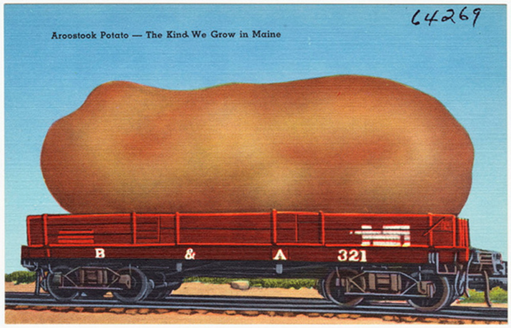 A potato postcard in print from about 1930 to 1945 points up the importance of the spud in Maine. While the state no longer dominates national potato production, it's still the biggest vegetable crop here.