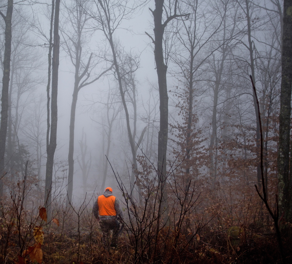 John Vogt Jr. of Oakland makes his way through dense foggy woods in New Sharon during an unsuccessful day of pursuing moose with his father, John Vogt Sr. of Belgrade.