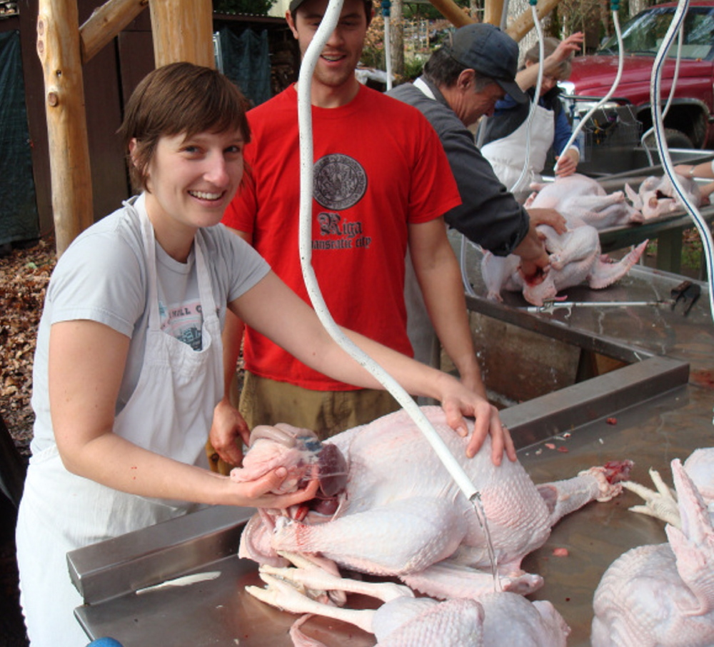 The author eviscerates a fresh farm turkey in Oregon for a previous Thanksgiving.