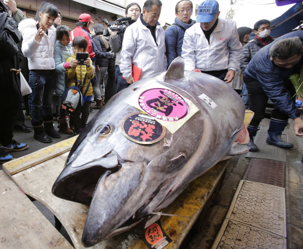 Bluefin tuna, like this one being auctioned at a fish market in Tokyo, are so popular that overfishing to meet demand has reduced the population to just 4 percent of its original size.