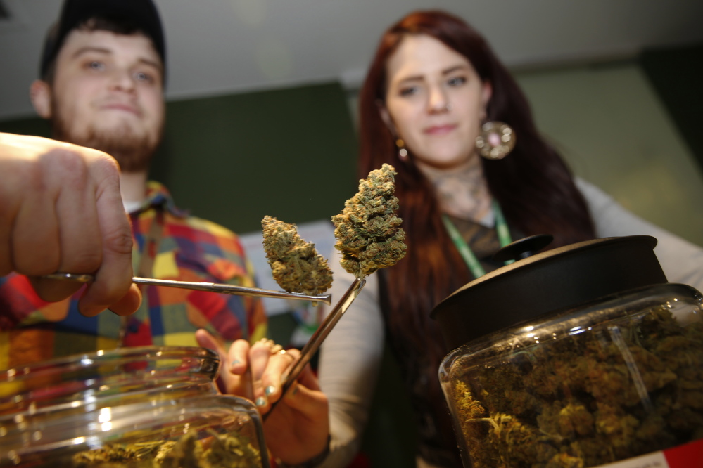 Bud tenders Maxwell Bradford, back left, and Emma Attolini display buds in the shape of Christmas trees that are on sale for the holiday season in a recreational marijuana shop in northwest Denver. The nascent marijuana industry in Colorado is targeting holiday shoppers with special deals much like traditional retailers offer.