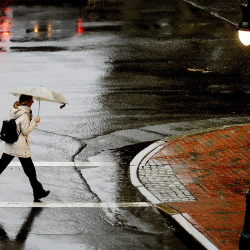 NOV. 17, 2014: A pedestrian walks along Congress Street in Portland under the protection of her umbrella on a rainy Monday afternoon in November.