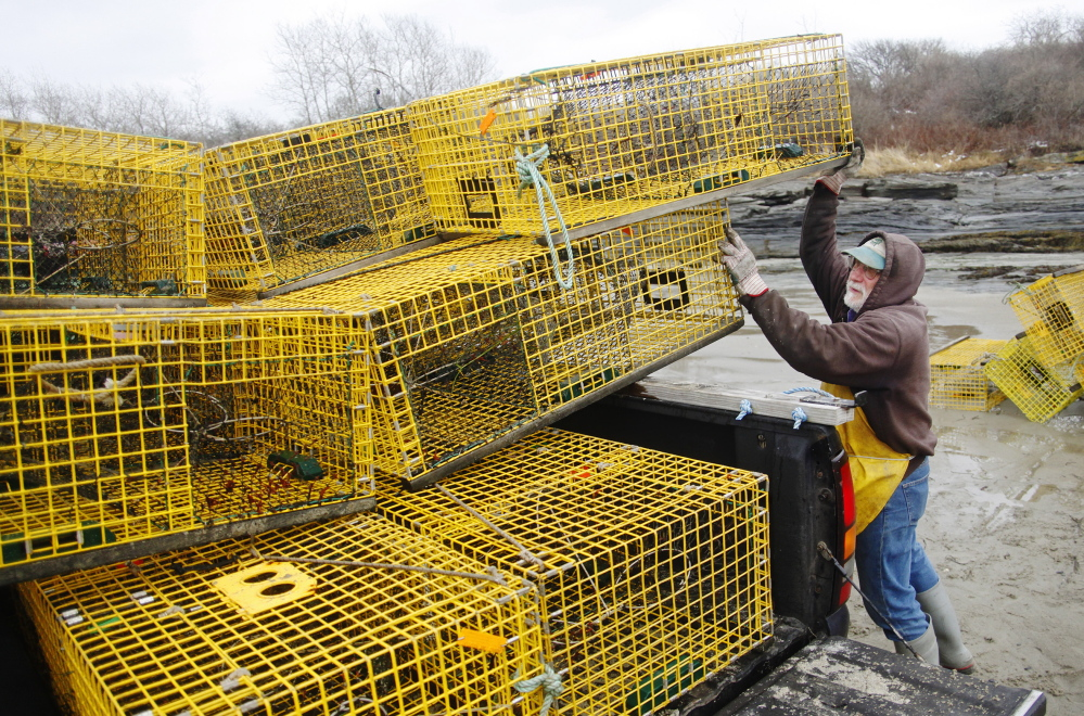 Ed Perry says it takes a few trips to bring all 45 traps to his home in Cape Elizabeth.