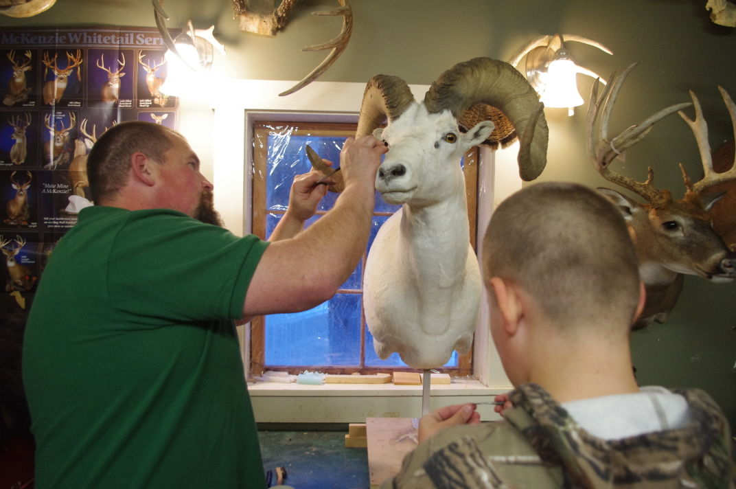 Taxidermists thriving despite weak hunt keep me current