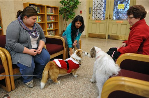 Midwestern State University students Heather Skelton, left, and Pooja Patel, center, enjoy petting therapy dogs provided by the Obedience Training Club of Wichita Falls, Texas , recently. About 10 dogs were brought to MSU to help students deal with the stress of studying for finals.   The Associated Press
