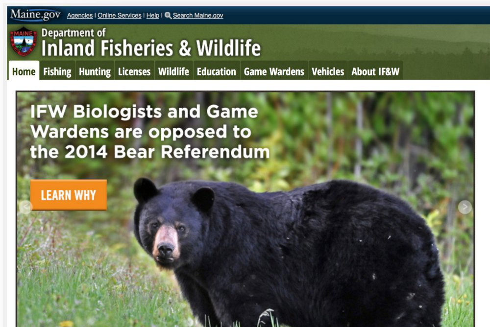 The Inland Fisheries & Wildlife Department's stance on the bear initiative is seen on the agency's website. Participation by state agencies or employees in political campaigns should be disclosed in campaign finance filings.