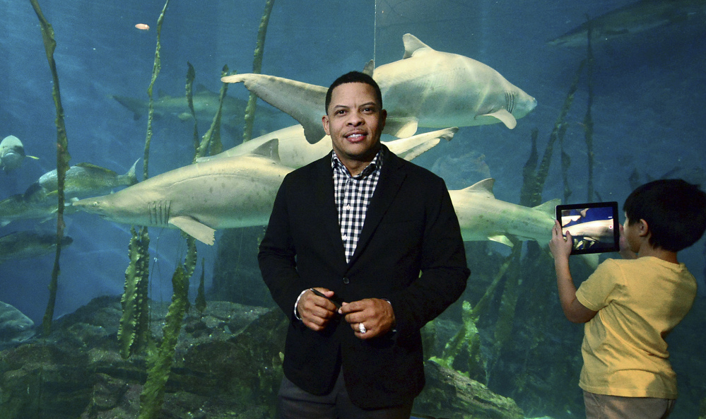 Brian Davis, new president of The Maritime Aquarium, poses in front of one of the displays at the aquarium in Norwalk, Conn. Davis succeeds Jennifer E. Herring, who retired Dec. 27 after heading the aquarium for a decade.