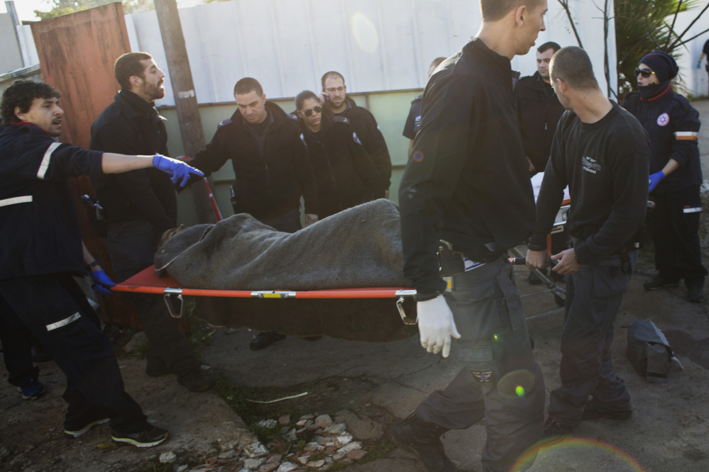 Israeli police officers and medics carry a Palestinian suspected of stabbing people from an area near the attacking site in Tel Aviv, Israel, Wednesday, Jan. 21, 2015. A Palestinian man stabbed at least 11 people on and near a bus in central Tel Aviv on Wednesday, seriously wounding three of them before he was shot and arrested by Israeli police. (AP Photo/Oren Ziv)