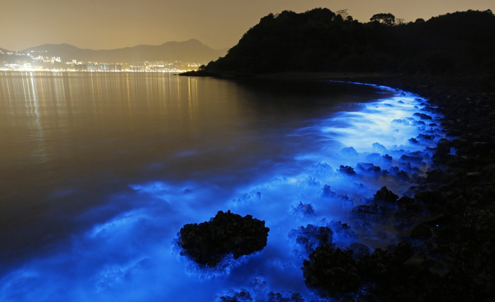A swath of so-called Sea Sparkle casts an eerie glow along a beach in Hong Kong. Biologists warn its presence may precede an increase in toxins.